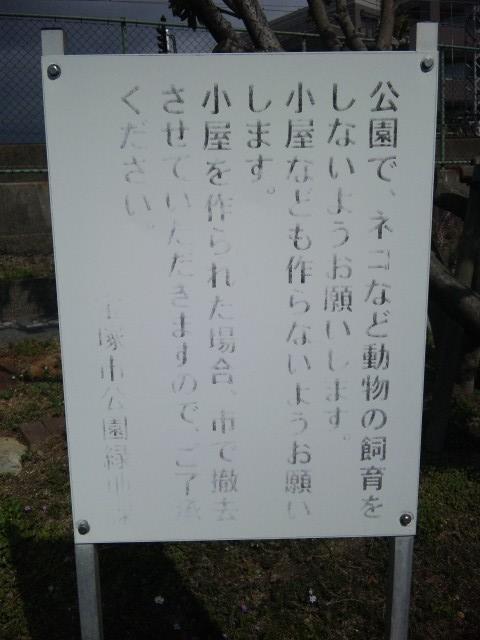 荒田公園4