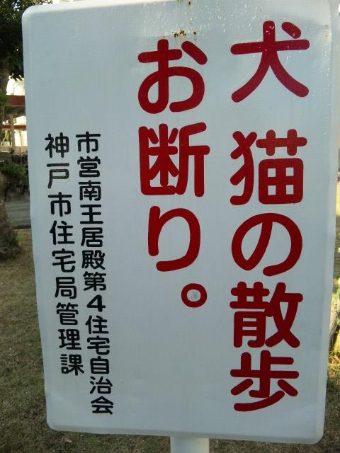 市営住宅看板2