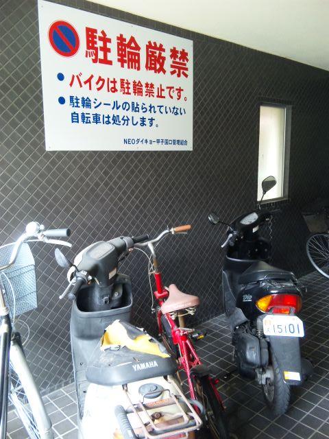 ネコダイキョー甲子園口 ポスター1