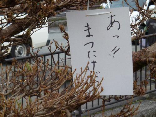 10_20111103185838.jpg