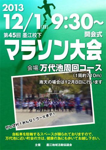 2013 のコピー
