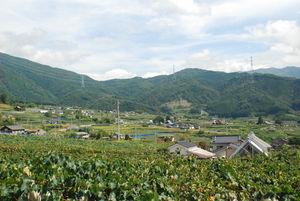 巨峰の丘の風景3