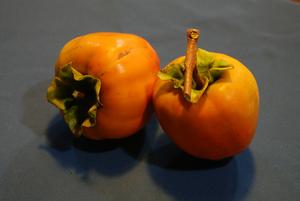 百メ柿16