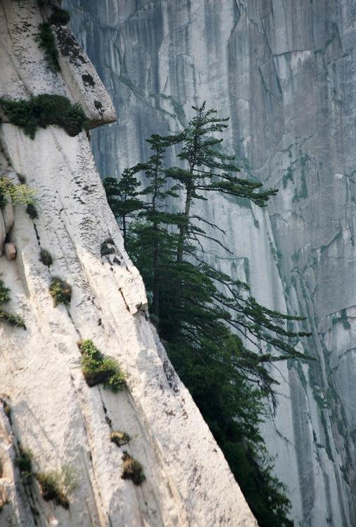 陜西省--西岳華山の旅11