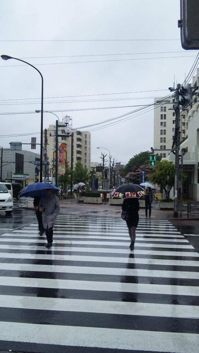 RAIN_20130421