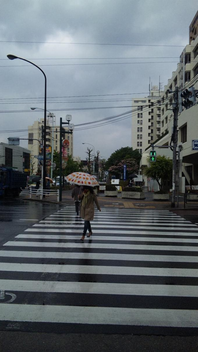 RAIN_20130424