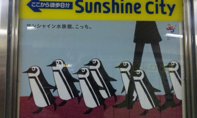 SUNSHINE CITY_20130503