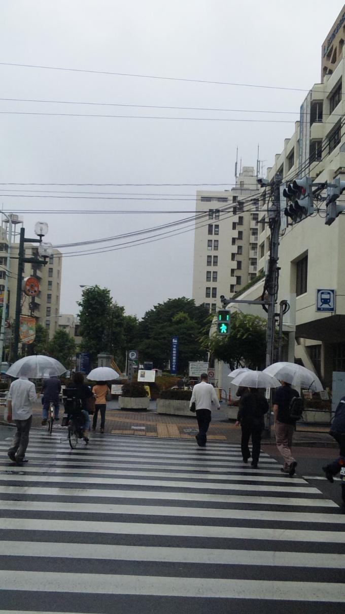 RAIN_20130611