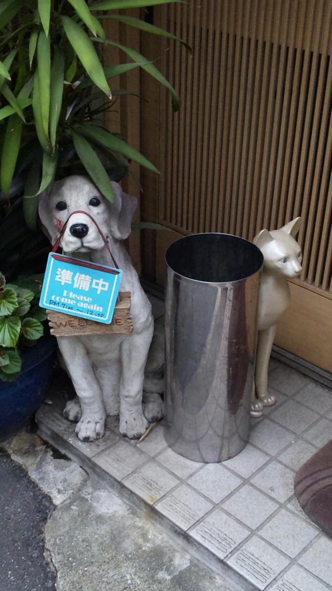DOG  &  CAT_20111021