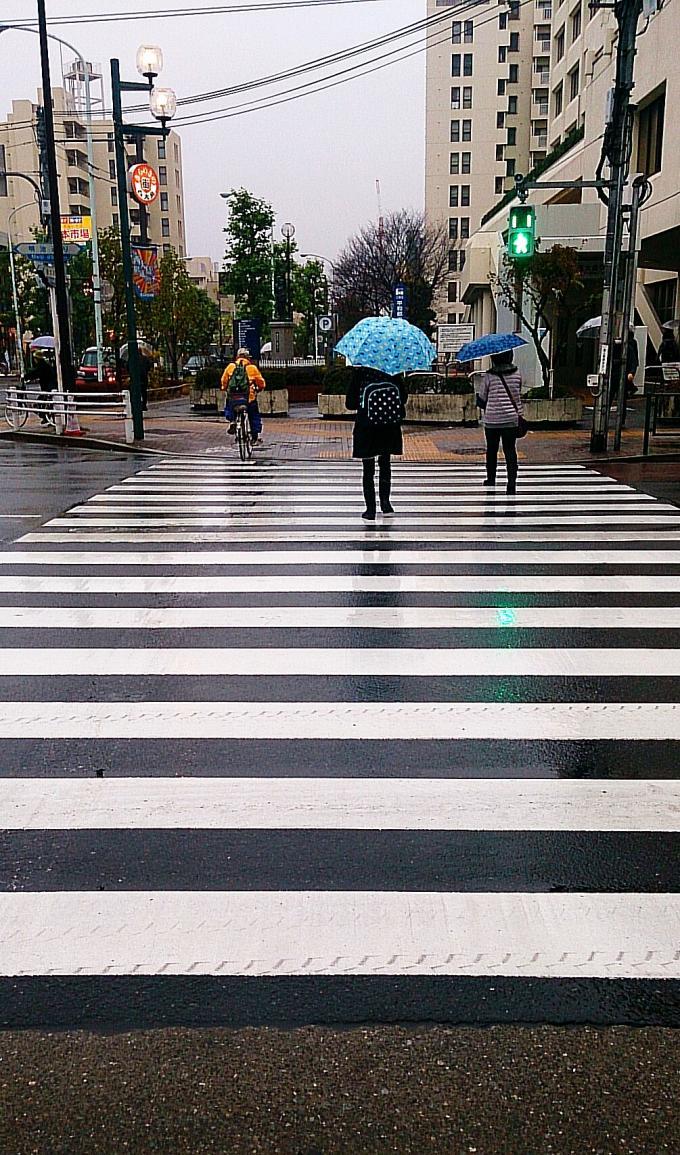 雨_20141201