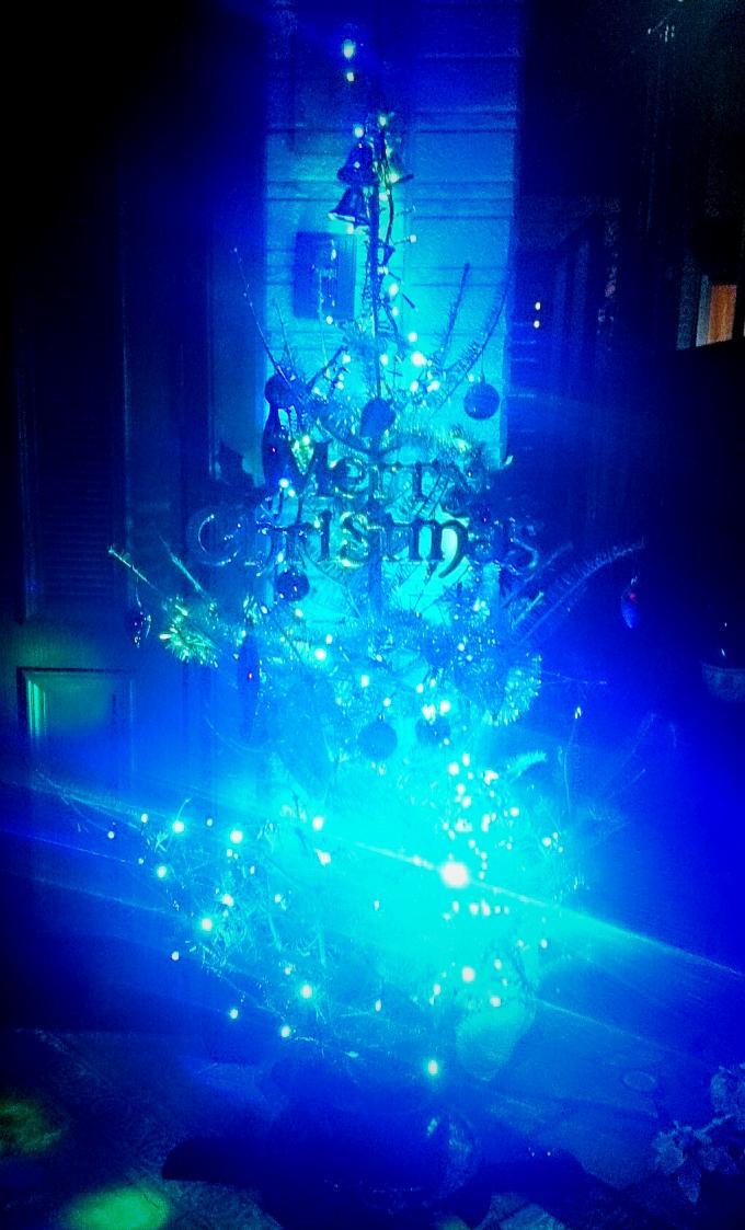 X'mas Tree_20141219