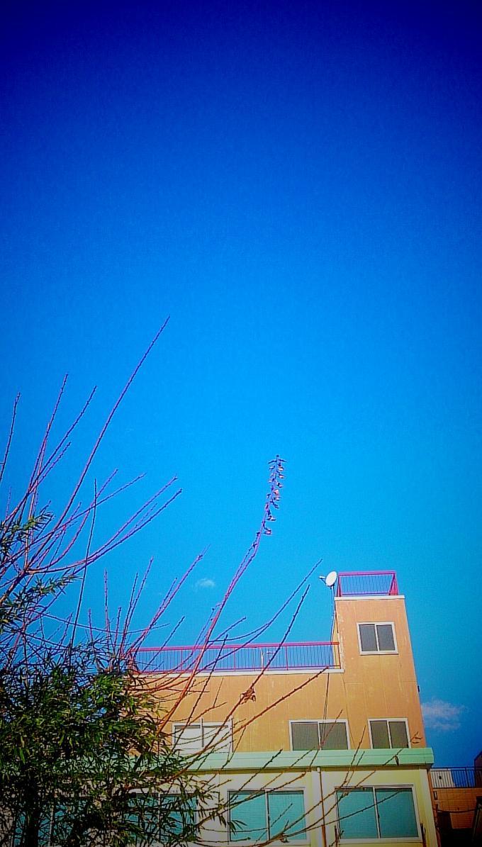碧空_20141223