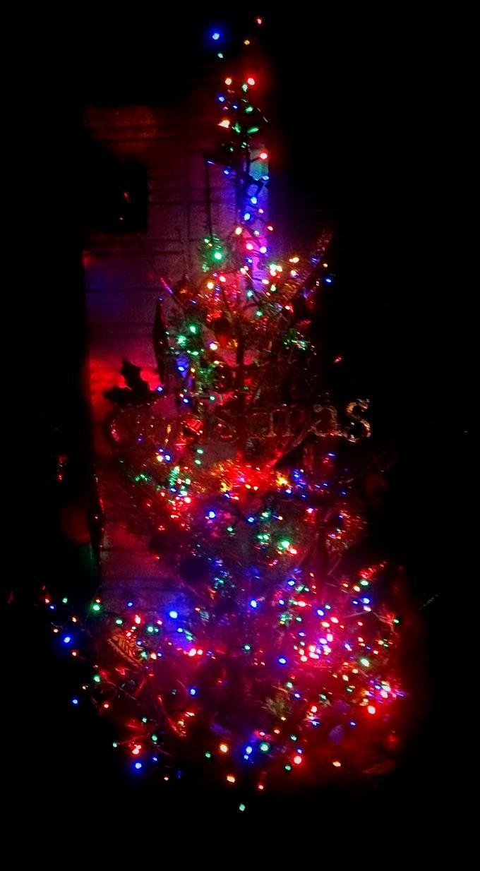 X'mas Tree_20141224