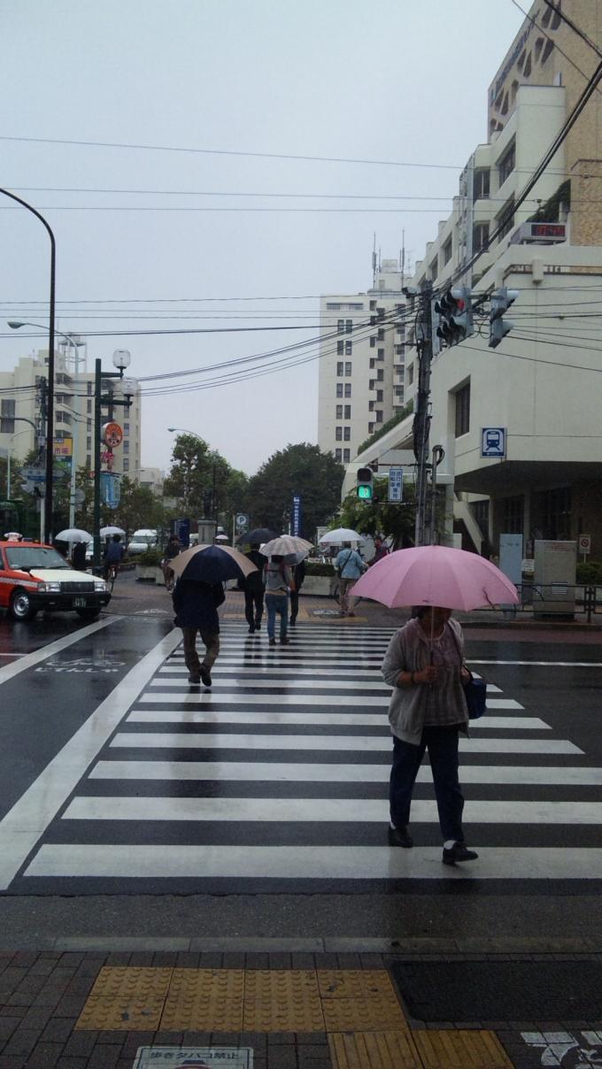 IN  RAIN_20111005