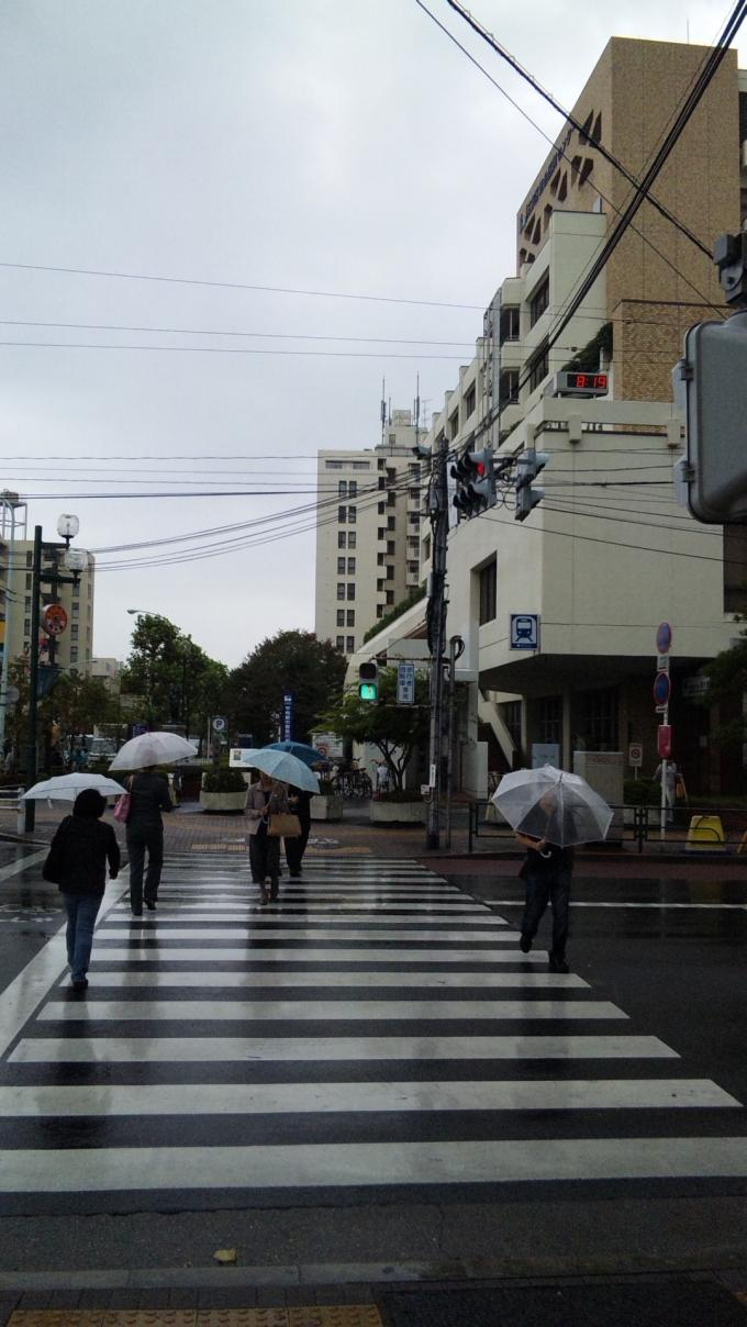 IN   RAIN_20111015