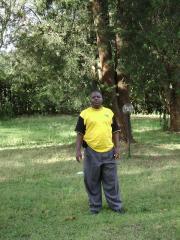 Diwani Mwamengo