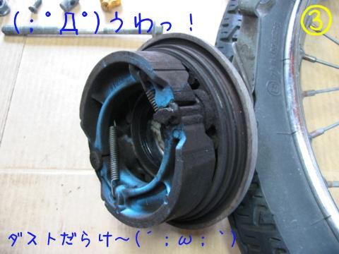 201303093.jpg
