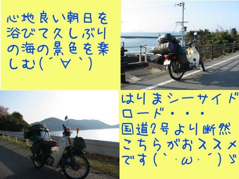 201303303.jpg