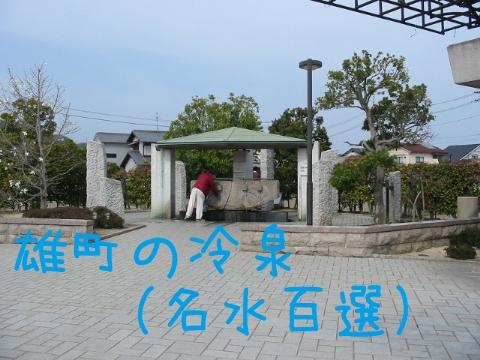 201303309.jpg