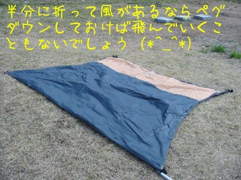 2013040305.jpg