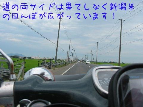 201307129.jpg