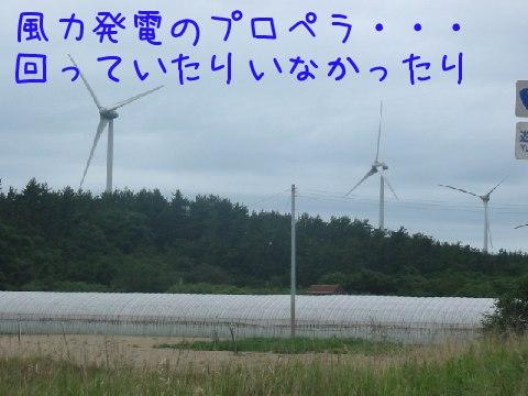 2013071401.jpg