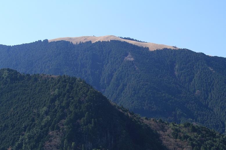 一徳坊山、1