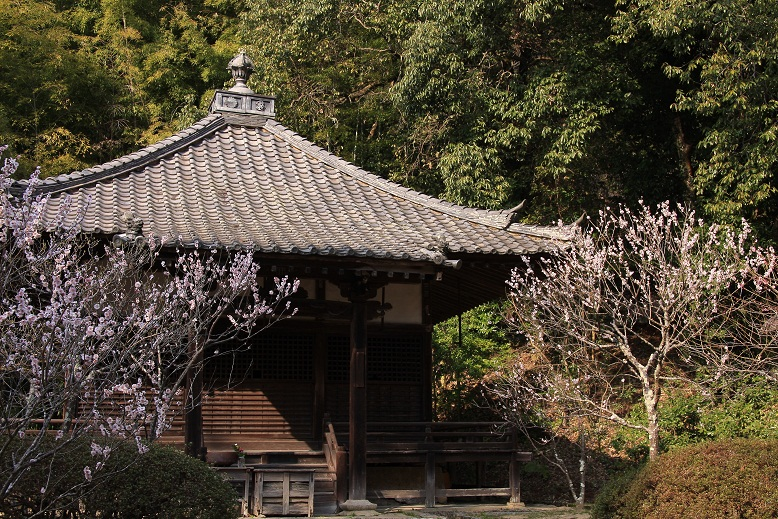 観心寺、3