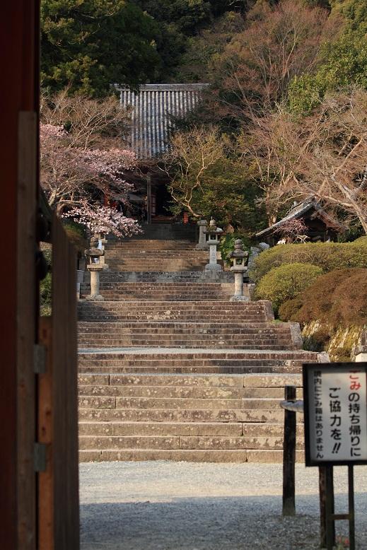 観心寺、10