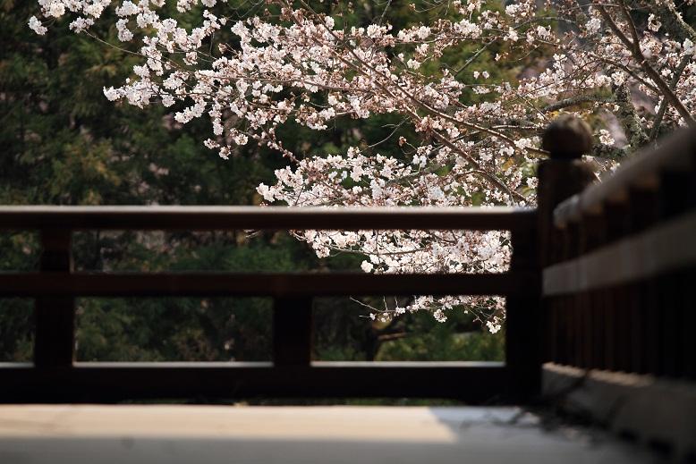 長弓寺、3