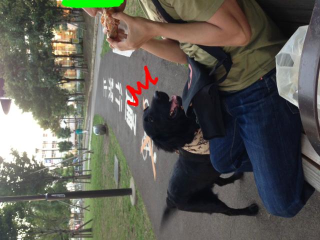 snap_fcrazukaridays_2014101234947.jpg