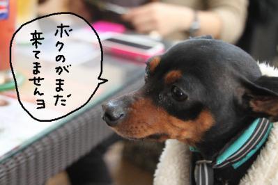 2012_12_09_9999_18.jpg