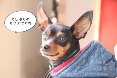 2013_11_23_9999_20.jpg