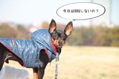2013_11_23_9999_94.jpg