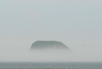 霧多布湿原