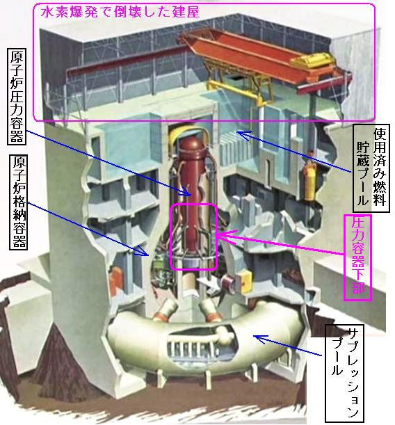 水素核爆発で東海した建屋ちんぽ亀