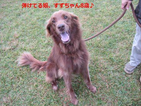 002_20111022182930.jpg