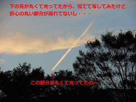 035_20111031125411.jpg
