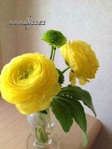 A写真 (8)