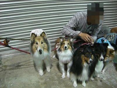 2011.9.23 foo&ぱっきんだけカメラ目線