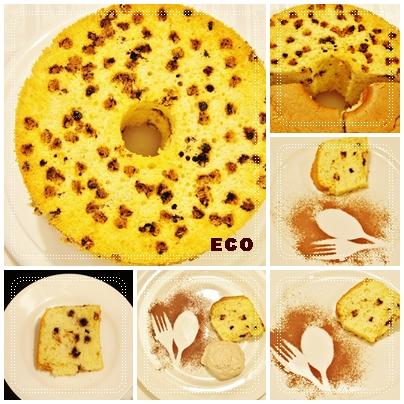 eco203.jpg