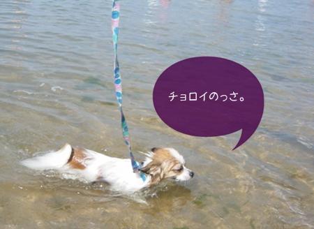 2002_07-07.jpg