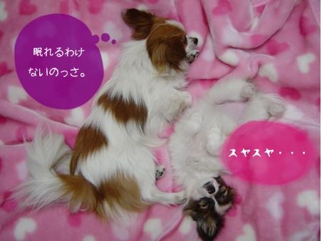 2004_03-22.jpg