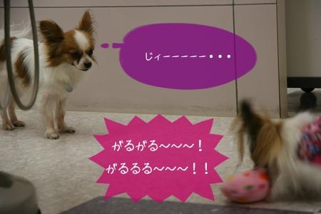 2006_02-10-1.jpg