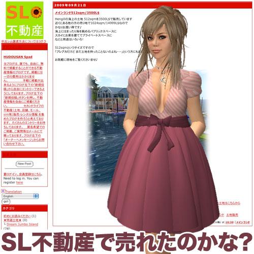 SL不動産で土地売れるかな?