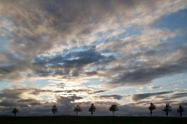冬の雲行き