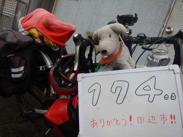 174(15).jpg