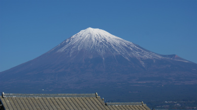 ドッグアロマセミナー 富士宮