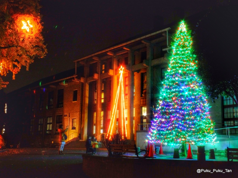 ルーテルクリスマスツリー01