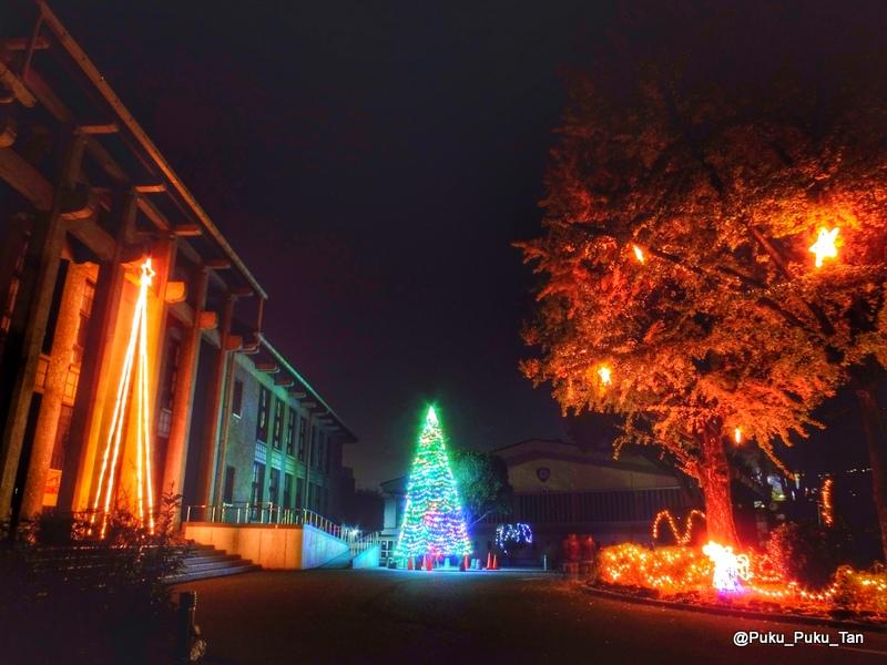 ルーテルクリスマスツリー05
